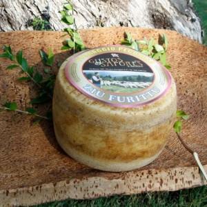 formaggio sardo ziu furittu 2